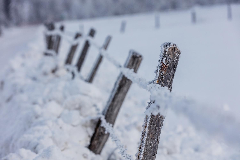 Winter Landschaftsaufnahmen-25