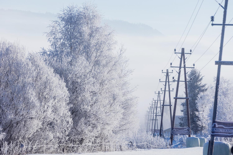 Winter Landschaftsaufnahmen-46