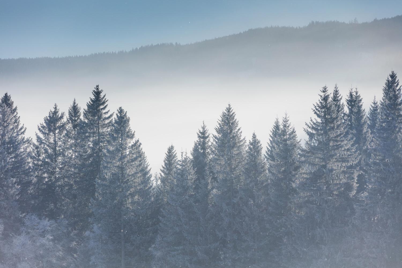Winter Landschaftsaufnahmen-47